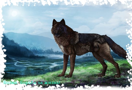 http://wolfroleplay.rolevaya.ru/files/0015/6d/67/59056.png